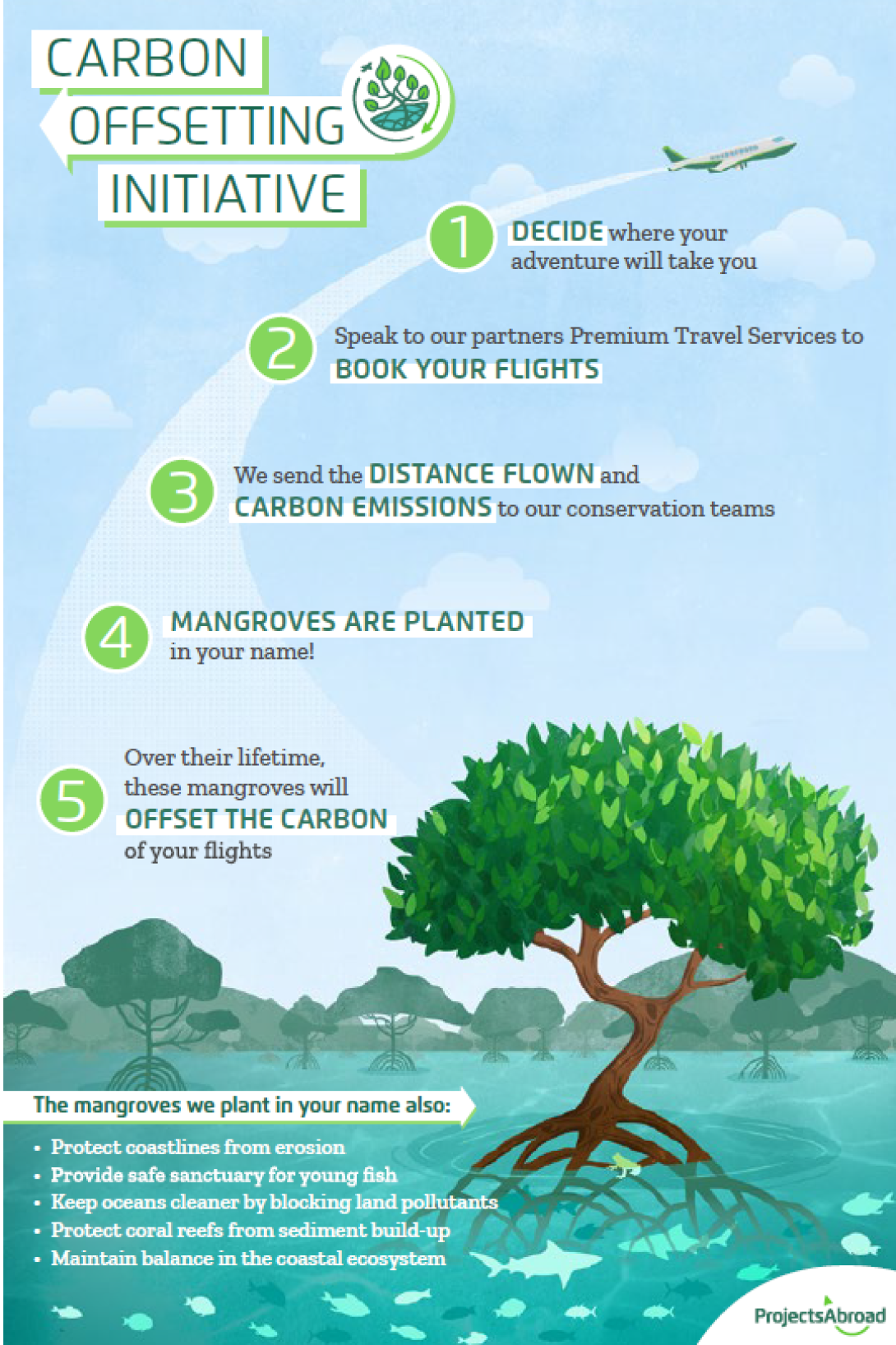 Infographic showing how planting mangroves reduces your carbon footprint
